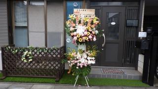 開店祝い花-スクール