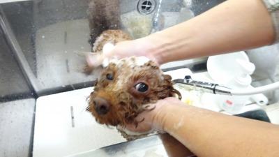 優しく洗ってよ♪
